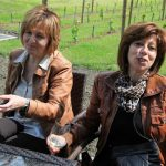 vinska-klet-mastnak61_velika